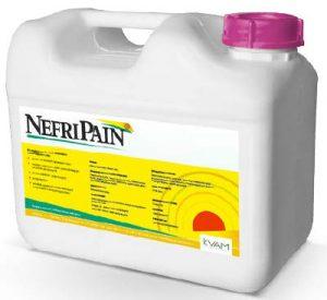Nefripain 5L                     (Kvam)